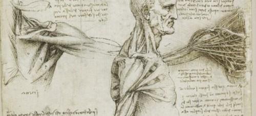 11 Carátulas para cuadernos de anatomía (2)