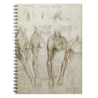 11 Carátulas para cuadernos de anatomía (5)