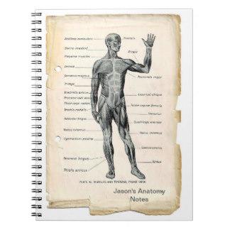 11 Carátulas para cuadernos de anatomía (6)